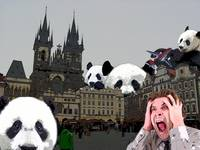 Pandamonium in Prague