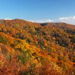 """NC_Smokies_Hwy.441View_110207"" by annmerritt"