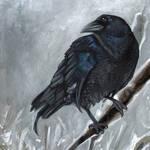 """""""Crow"""" by susanvansant"""