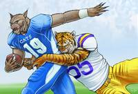 Wildcats vs Tigers