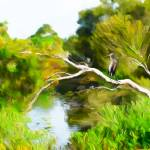 """Landscape with heron"" by mdarrah"