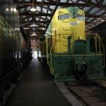 """Green & Yellow Giant"" by LillianDavis"