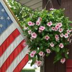 """Front porch vinca"" by LillianDavis"
