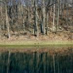 """Lake Reflections"" by ArtlbyYelena"