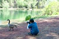 Photographer Captures Essence of Goose