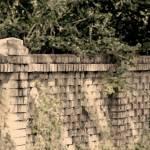"""Brick Fence"" by marytrostle"