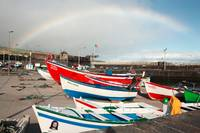 Rainbow at the harbour