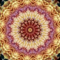 Kaleidoscope 3 Art Prints & Posters by Jutta Annette Pitman