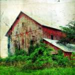 """Old Red Barn"" by angelandspot"