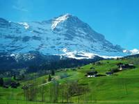 Refreshing Swiss Alps