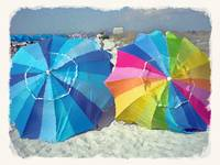 Caladesi Beach Umbrellas