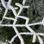 """Cannon Mountain Tree Ice"" by BobHurd"
