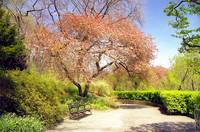 Conservatory Gardens, New York City