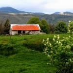 """Countryside Barn"" by ShaneWells"