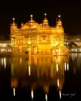 Golden Temple night