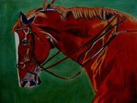 Horse Colored Pencil Art Prints
