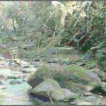 """Another Smoky Mountain Stream"" by pdw"