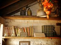 Potting Shed Books