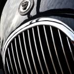 """Jaguar XK bonnet detail."" by maxblack"