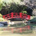 """Japanese Garden Bridge"" by PamelaJoy"