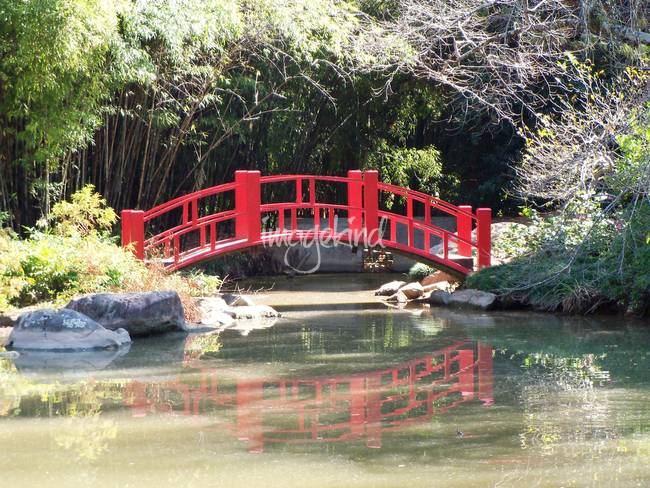 Stunning Japanese Garden Bridge Artwork For Sale On Fine