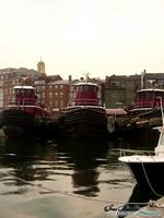 Tugs, Portsmouth NH