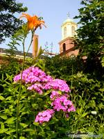 St. John's Church & Flowers, Portsmouth, NH
