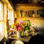 """Potting Shed #2"" by gwpics"