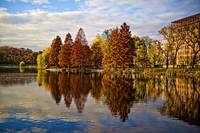 Autumn Colors and Foliage at the Harlem Meer