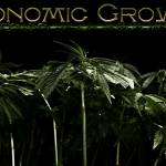"""Economic Growth"" by manjuria"