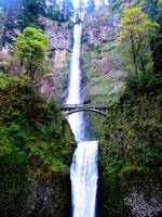 Multnomah Falls,Benson Bridge, Oregon 1