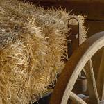 """Hay and wagon wheel"" by Donshots"