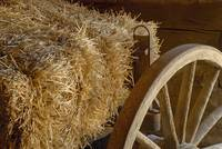 Hay and wagon wheel