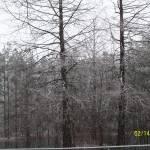 """""""Winter"""" by KMVDesigns"""