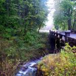 """""""Oregon Bridge"""" by ShaneWells"""