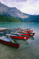 Canoes  at a Dock, Emerald Lake
