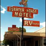 """Quarter Horse Motel, Benson, Az."" by jillnjer"