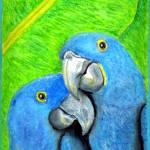 """BirdHug"" by CassandraArt"
