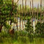 """""""Montezuma Bog"""" by RoNel"""