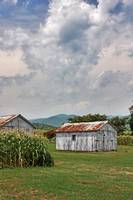Virginian Countryside