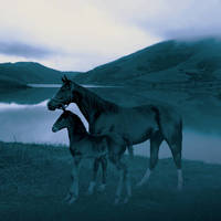 Mare with Foal at Dawn by I.M. Spadecaller