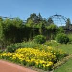 """""""Secret garden"""" by BethsSpecialMoments"""