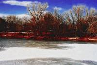 Winter Day Along the South Platte