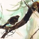 """""""Winter Bird"""" by stonetiger"""