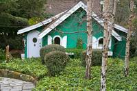 The Little Green Cottage
