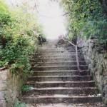 """Last steps"" by Apc"
