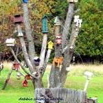 """birdhouse tree"" by mysparetimedesign"