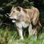 """Lioness"" by SamSmith"
