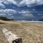 """Beach Log HDR"" by MikeandAmy"
