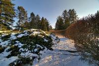 HDR Winter Scene 2